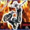 stuntman31