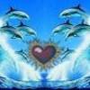 x-love-dauphin35