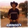 aminoo-crazy
