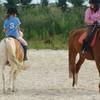 horse-mathilde