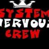 system-nervoux