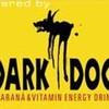 dark-dog41