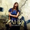 Zahoo-blog-officiel