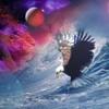 hakim-aigle
