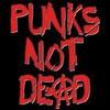 Punk-Z-not-DEAD