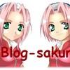 blog-sakura