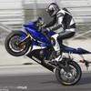 biker-stunt-maroc