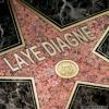 laye-190