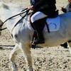 poney-aux-championnats