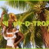 couleur-d-tropik