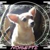 noisette08