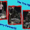 harry-forever01