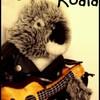 la-Vie-de-Peter-le-Koala