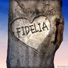 fidelia736