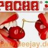 x-PaChA-31
