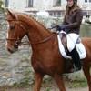 I-lOve-Horse-Riding