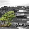 Japan-Netsuai