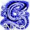 nico-du-91210