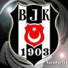 besiktas-world