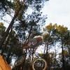 yoann-rider