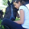 il0ve-horses