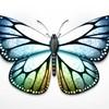 Like-a-butterfly93