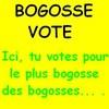 bogosse-vote