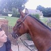 mes--chevaux