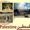 PalestineVivra