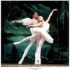 danse--classique01