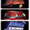 WWE-TheGoldStandard-WWE