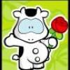 Ptite-Vache-Rose