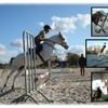 lovehorses27--2