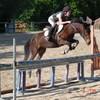 horse-kerellou