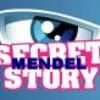 secret-mendel-story