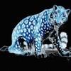 panther-girl29