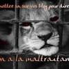 sos-animaux-en-danger-15