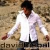 davidbisbal1
