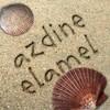 azdineino2
