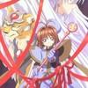 love-sakura-forever