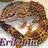 Erikania
