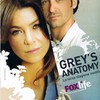 greys------anatomy