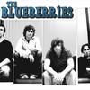 theblueberries
