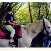 chevaux77310