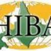 hiba-18