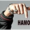 Ham0u-ZiK