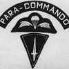 PARA-COMMANDO1981