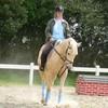 lilou-passion-chevaux