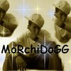 morchid-dogg