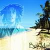life-of-reggae